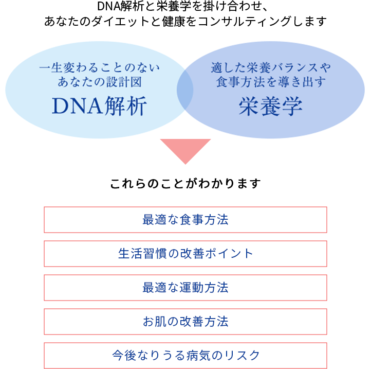 DNA解析、栄養学プ